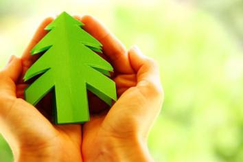 Festive tips for a sustainable Christmas